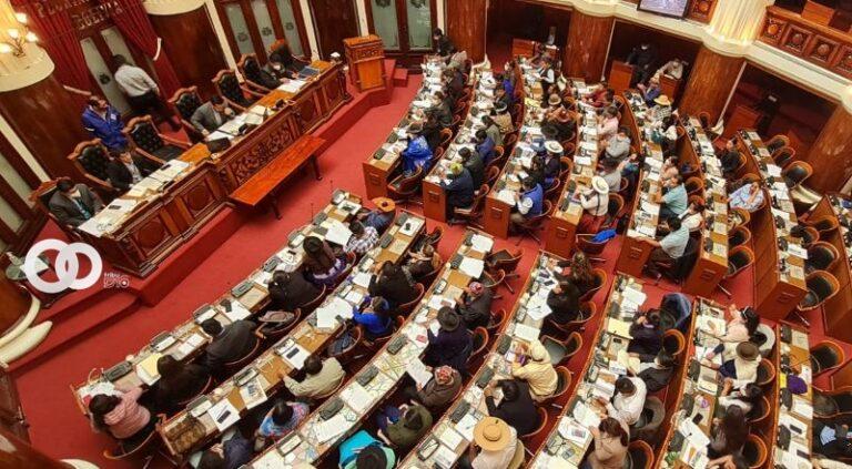 Senadores priorizan modificación de Ley 348