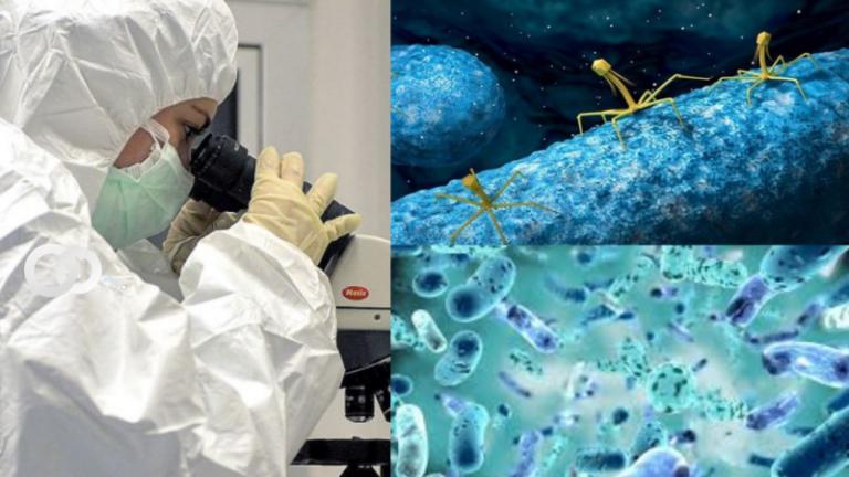 70.000 virus desconocidos alojados en el intestino humano son descubiertos