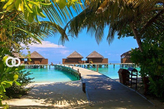 La economía de Maldivas, que depende en gran parte de la industria del turismo, propone impulsar esa área ofreciendo vacunas contra el covid-19 / fuente Pixabay