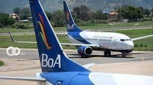 Pasajera fue víctima de un robo en la aerolínea BOA