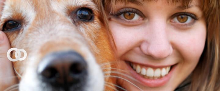 imagen: clínica veterinaria del bosque