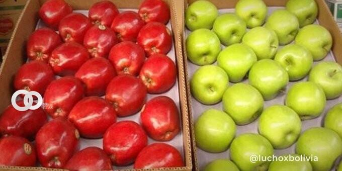 Gobierno modifica aranceles para la importación de alimentos