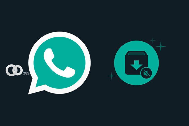 Whatsapp y su nueva función de mensajería