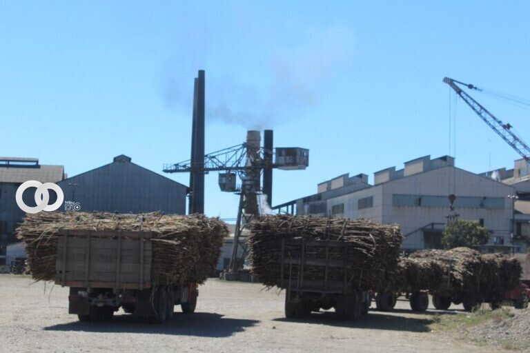 Ingenio azucarero de Bermejo reinició operaciones