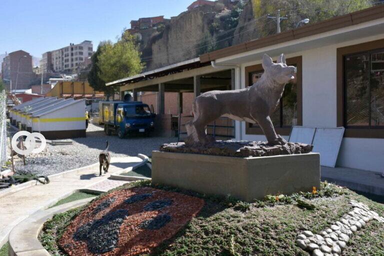 Septiembre sería el mes para la carnetización de mascotas en La Paz