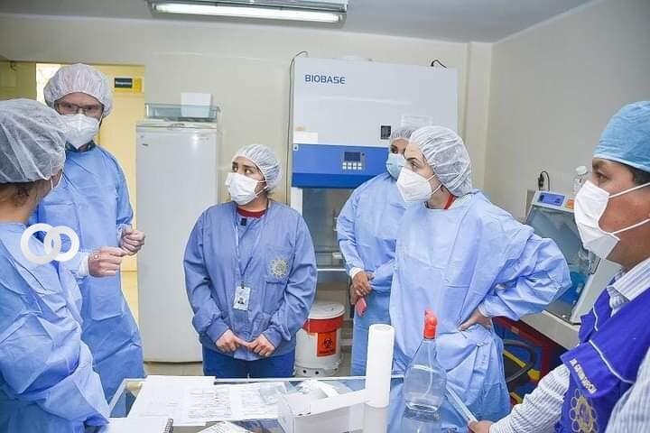 Expertos alemanes llegarán al país para intercambio técnico-científico sobre mutaciones del SARS-CoV2