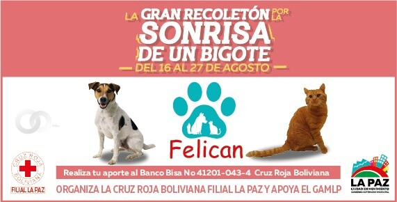 """Campaña """"Recoletón Felican"""" extiende aportes hasta el 4 de septiembre"""