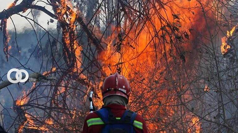 Incendios forestales afectan los Municipios de Roboré y San Matías