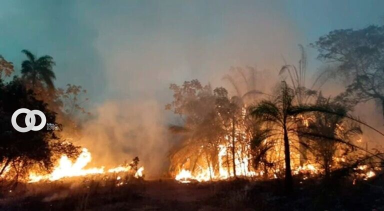 A causa de las sequías e incendios se declaró desastre municipal en San Matías