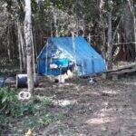 Diputada denuncia que hubo una emboscada de avasalladores en Bajo Paraguá