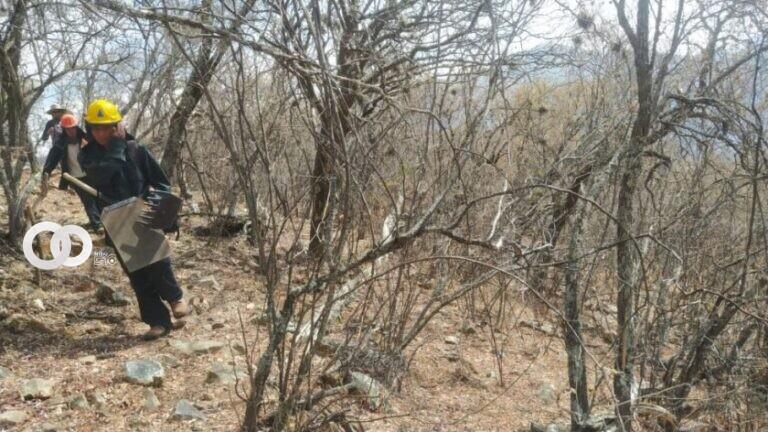 Defensa Civil declara sofocados los incendios en El Palmar y Zudáñez
