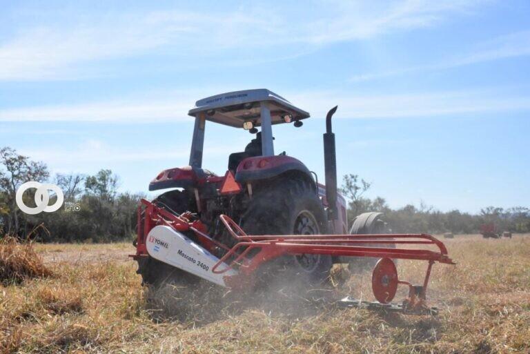 Aprueban Ley para reactivar al sector agropecuario e industrial