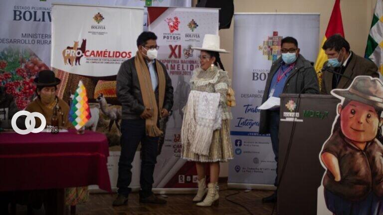 MDRyT organiza la XI Expo Feria Nacional de Camélidos de Potosí