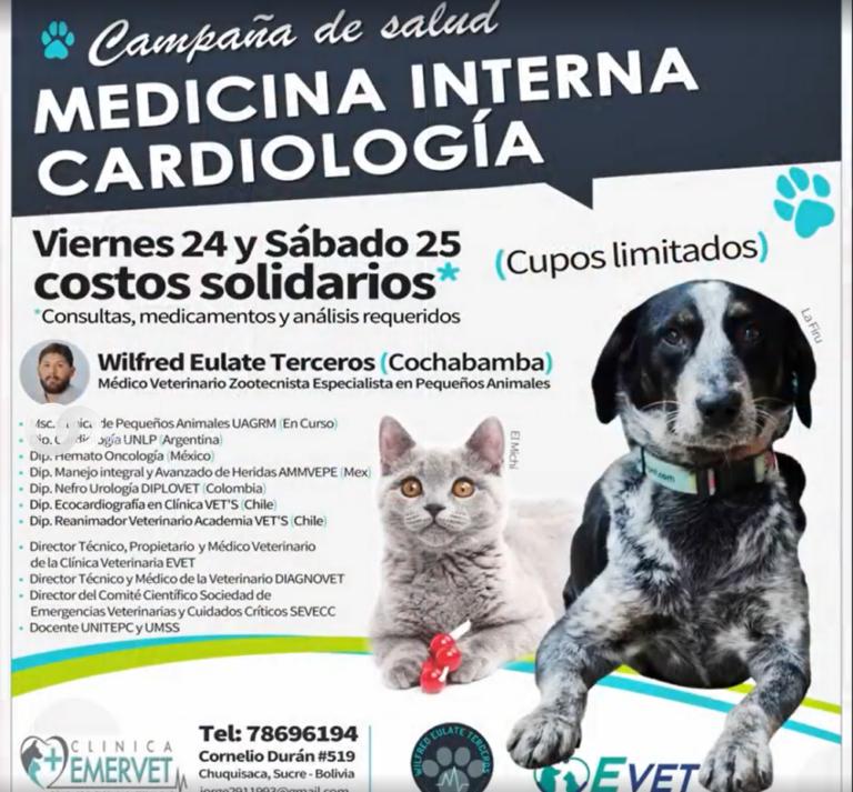 Chuquisaca: se realiza campaña de salud para mascotas pequeñas