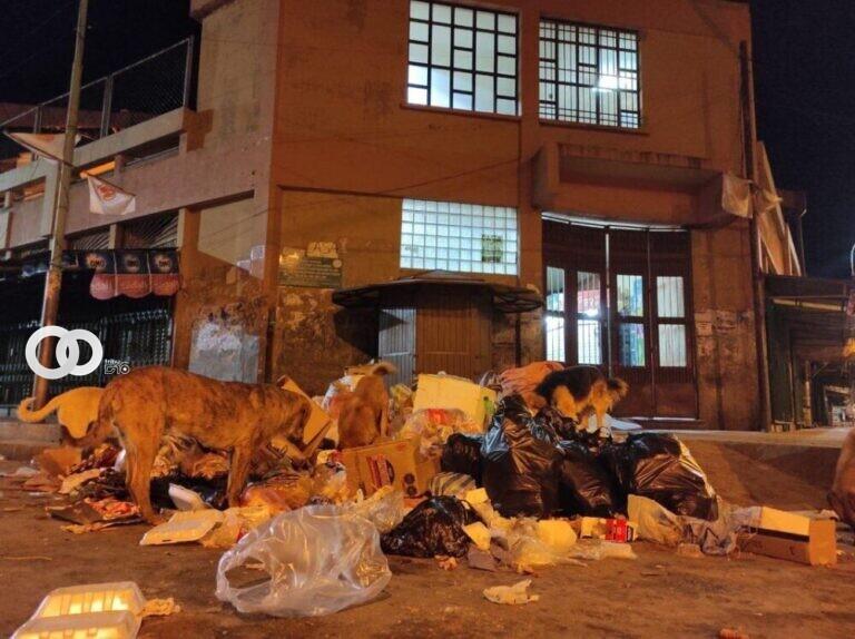 EMAO habilita línea telefónica para denunciar a ciudadanos que tiran basura en lugares indebidos