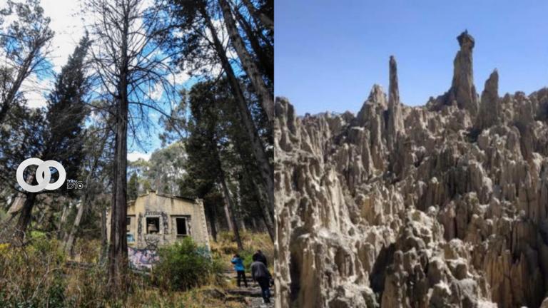 Alcaldía de La Paz organiza recorridos por el Bosquecillo de Pura Pura y el Valle de la Luna